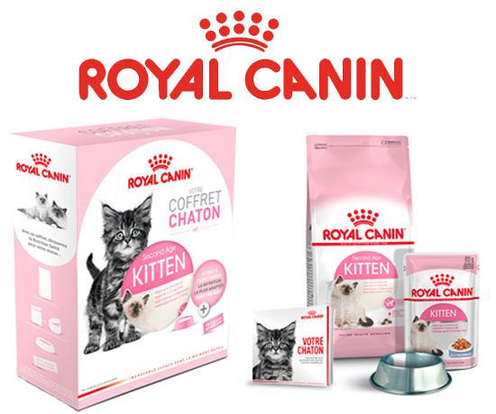 Echantillon Gratuit : Royal Canin – Coffret chaton