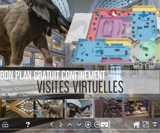 Bon Plan Culturel Gratuit pendant le Confinement et découvrez les visites virtuelles des plus grands musées